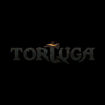 Игровая система Tortuga