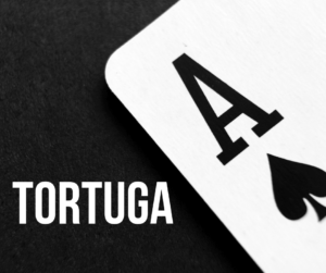 Казино Tortuga